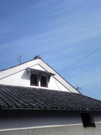 Saku7_2