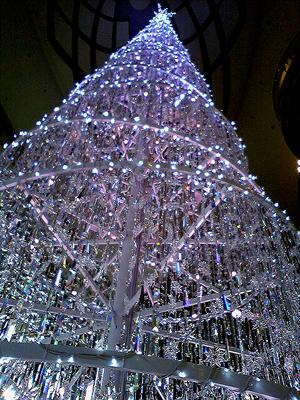 Tree095