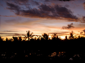 Balihotel1
