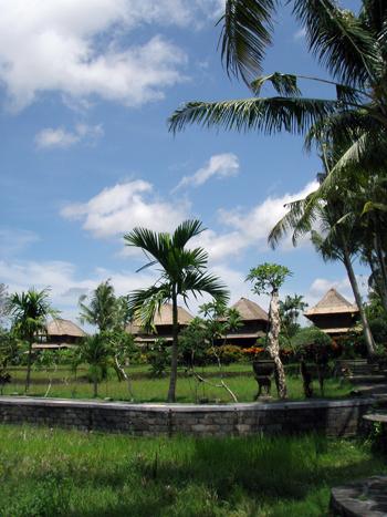 Balihotel10