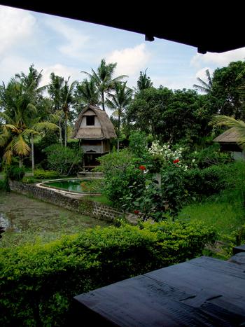 Balihotel11