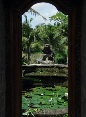 Balihotel14