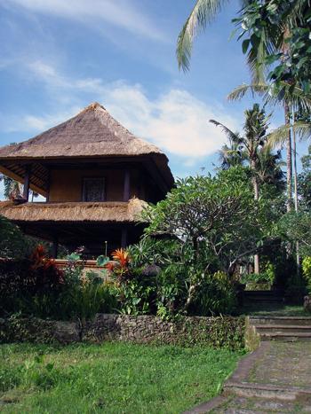 Balihotel9